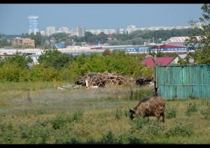 Неподалеку от станции метро им. Академика Барабашова